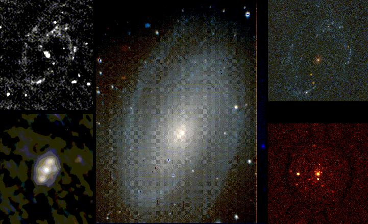 [M81 at different wavelengths series]