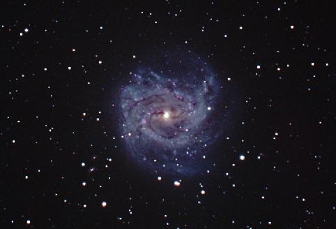 [M83, George Greaney, newer image]