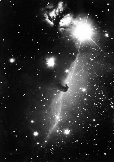 [Horsehead Nebula Region]