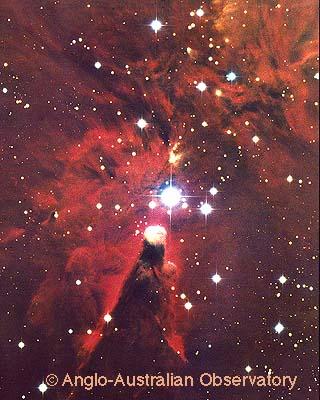 [NGC 2264 image]